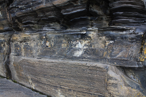 Very fine layering in the erroded limy mudstone of Caithness in the upper layers. The lower strata are patterned due to syneresis cracks which are shrinkage cracks formed below the water surface.