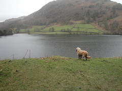 Admiring the view Rydal Water April 2010