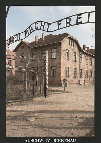 Auschwitz Birkenau  German Nazi Concentration and Extermination Camp (1940-1945) (1979)