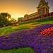 Sunsets over Disneyland by Matt Pasant
