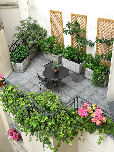Fleurs et plantes jardin de l 39 od on flickr photo sharing for Fleurs plantes et jardins