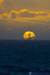 vehicle(0.0), sailing(0.0), parasailing(0.0), reflection(0.0), horizon(1.0), cloud(1.0), sea(1.0), sun(1.0), ocean(1.0), sky(1.0), dusk(1.0), sunset(1.0), sunrise(1.0),
