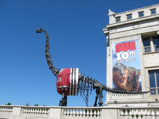 Chicago Blackhawks Field Museum Dinosaur A Photo On