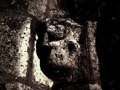 Ours sculpté sur un chapiteau de l'église Saint-Martin d'Egreville
