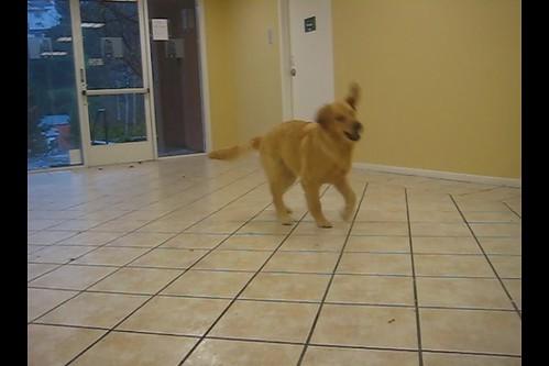 Me On The Dance Floor ~ Not Quite The Baby Ballerina Yet