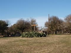 Mission San Juan 4.JPG