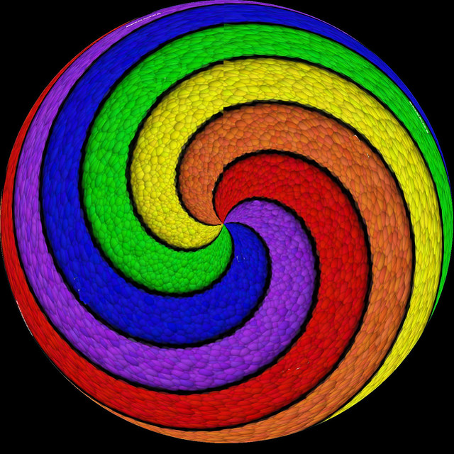 Nopen spirale