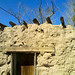 Small photo of Adobe House
