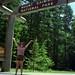 Mount Rainier National Park (July 2000)