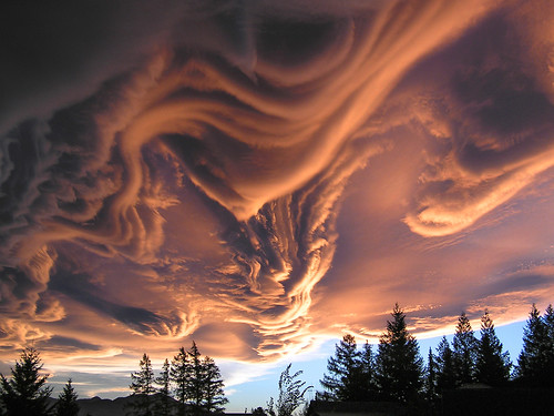 Asperitas Cloud, formerly Undulatus Asperatus