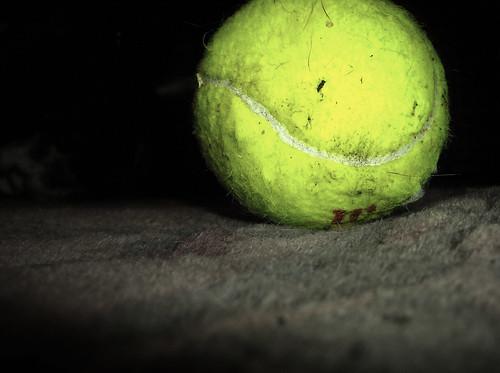 Tennis Ball Photography