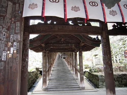 長谷寺 - Hase-dera // 2010.03.31 - 10