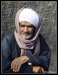 Camel Market Egypt 2004