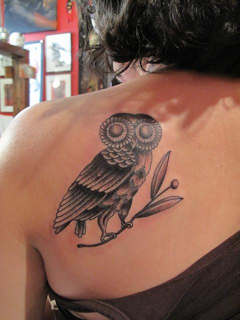 athena owl flickr photo sharing