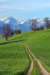 The Road to the Alps