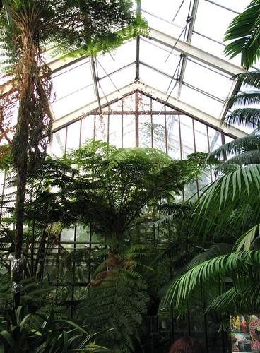 Hortus Greenhouse