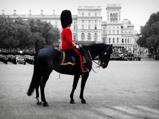 Mounted Grenadier Officer - Selective Colour