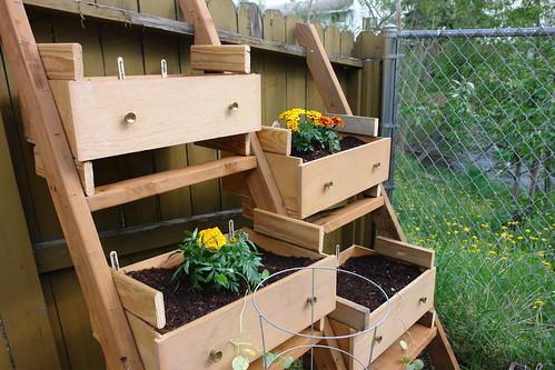 Coltivare le piante in modo originale