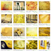 fpoe yellow treasury (on etsy) by uninvented colors