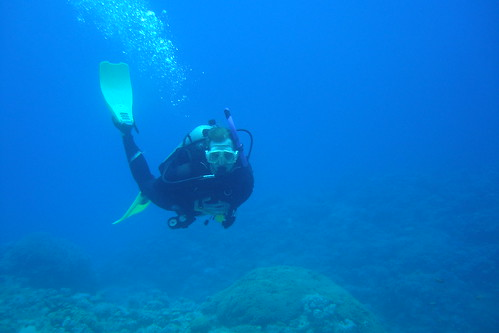Diving the Gulf of Aqaba