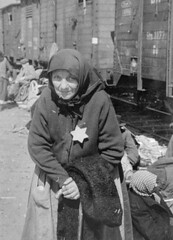Perla Schwartz arrives at Auschwitz, May 1944