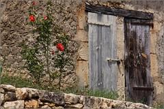 Les Eyzies-de-Tayac-Sireuil & Around
