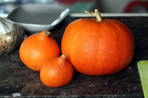pumpkins & potimarron