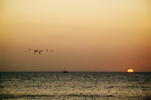 sunset texture beach silhouette boat nikon horizon jhames d40 birdsflying