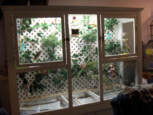how to build an indoor aviary for finches