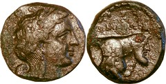 01/1 ROMAION ??????? Litra. Apollo, Forepart man-headed bull. The FIRST Roman Coin minted in Naples, 326BC