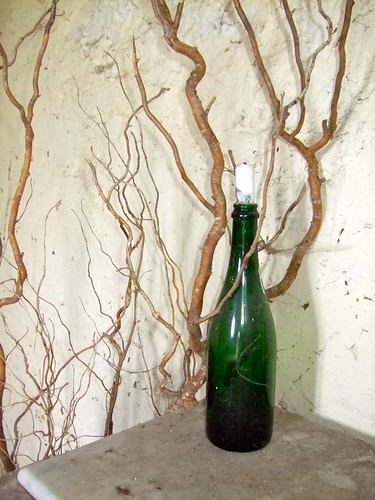 Wine Bottle and creeping branches
