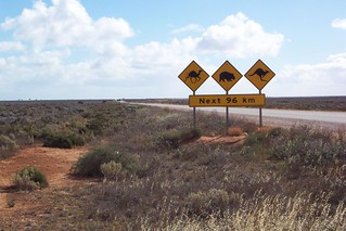 Crossing the Nullabor