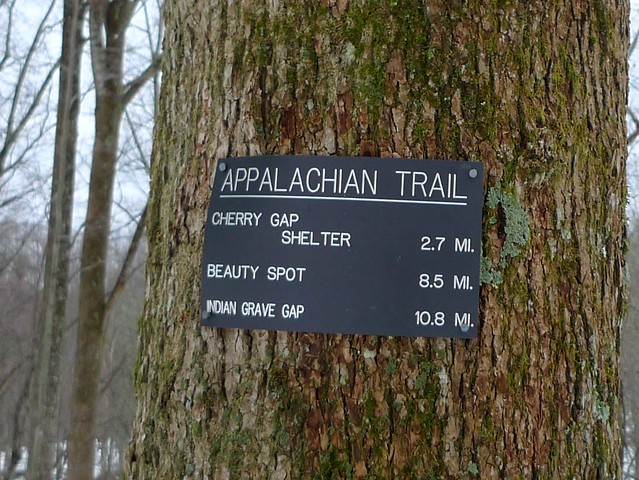 Appalachian Trail Iron Mountain Gap Tn 107 Flickr