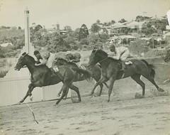 Horseracing at Brisbane