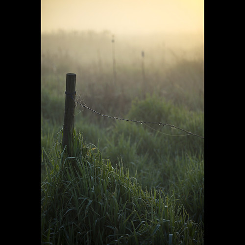 morning dawn spring dof surrey barbedwire april fencepost morningmist serpentinefen kvdl canonef70200mmf28lisiiusm