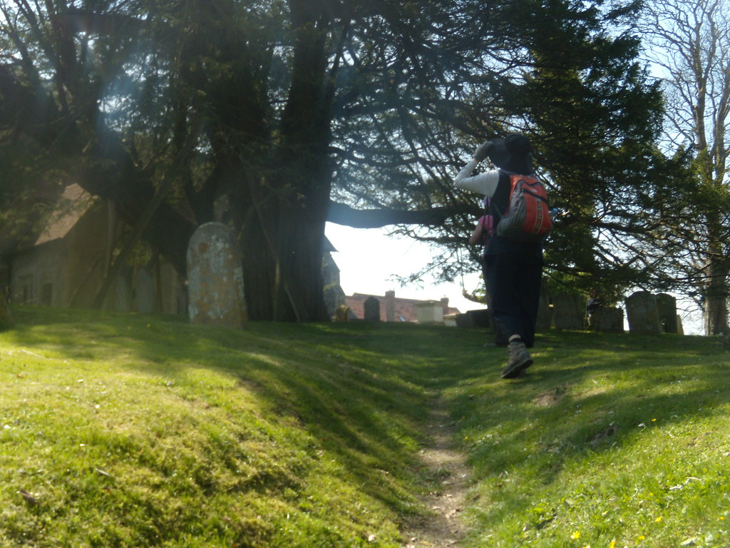 The Wilmington Yew Berwick to Seaford