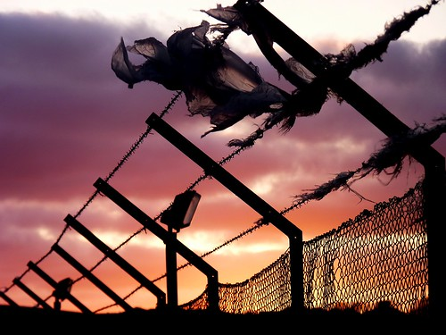 barb wire sunset