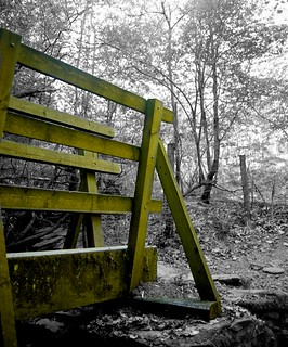 Selective Colour Bridge