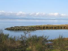 wetland, reservoir, sea, plain, loch, natural environment, reflection, inlet, shore, wilderness, salt marsh, coast,