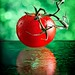 Red Tomato (153 of 365) by lighthack