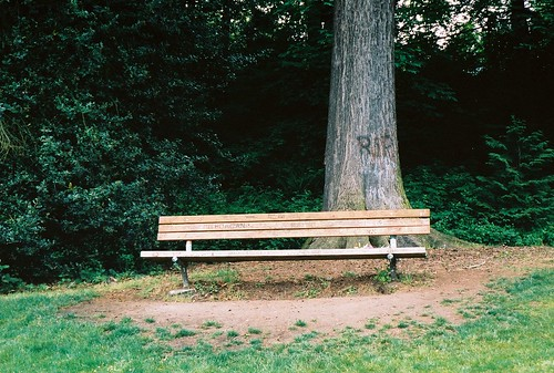 Kurt Cobain Memorial Bench in Viretta Park