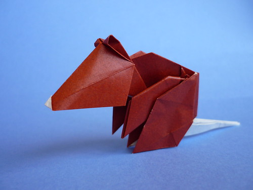 All Folded Up: And Another Rat, too - photo#11