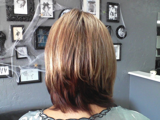 LESLIE BACK VIEW HAIR RAIZERS SALON, BRADENTON, FLORIDA