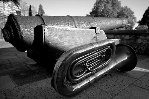 nikon rijeka croatia musician bass cannon d750