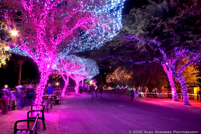 Christmas Lights Phoenix Az