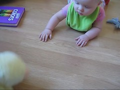 Sonja Crawling