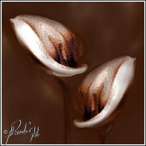 """Arum Lilies"""