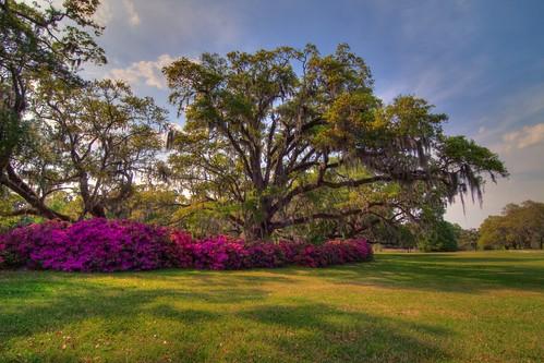 sculpture art sc gardens landscape tripod southcarolina hdr gitzo murrellsinlet brookgreengardens photomatix 5exposure arcatech tokinaatx116prodx gt2531