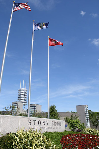Stony Brook Flags