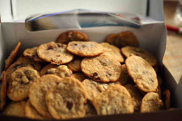 Malted Chocolate Chip Cookie Recipe